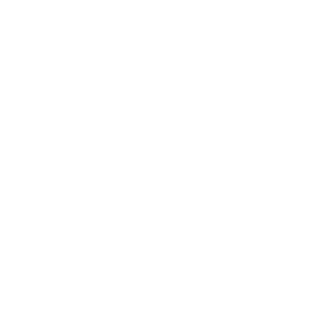 Disney Audit
